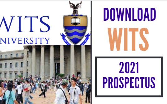 Download University of The Witwatersrand,Wits Prospectus 2021