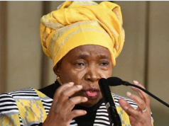 Nkosazana Dlamini-Zuma Has Bad News For Alcohol Drinkers ,Check What She Said